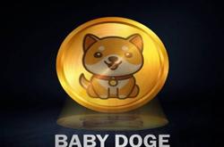 ZT交易所:注册实名即可获得100,000,000枚BabyDoge空投,邀请新用户可获得20,000,000枚BabyDoge糖果空投,新用户KYC后系统自动发放