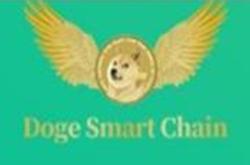 Doge Smart Chain:邮箱注册无需实名送5千亿枚DSC,价值10USDT,每日登录签到送250亿枚,直推1人送5千亿枚,间推1人送2.5千亿枚,宣称8月份上线博饼交易所!